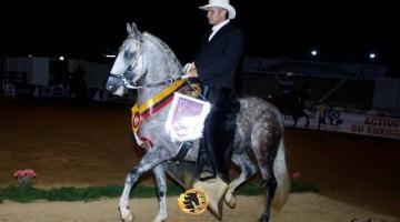Gran Campeón  Napoleón de la R (Don Elias )