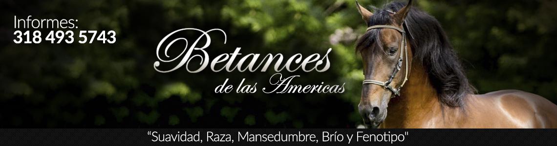 banner-betances
