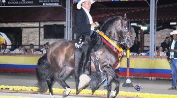 Gran Campeón  del trote y el galope  en la exposicion equina grado B de Popayan,Perseo Del Prado (Renegado De Las Leyendas X Barbie II)